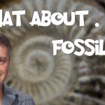 What About… Fossils?